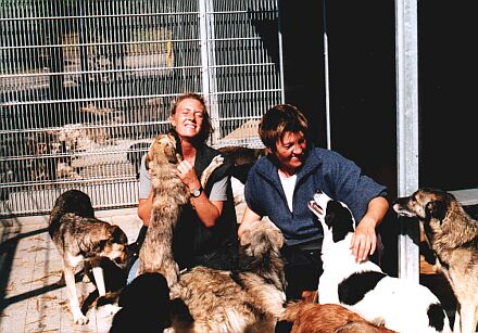 Zwischenstation in Heilbronn: Die rum�nischen Hunde betteln um Zuneigung. Die Herzen der deutschen Tiersch�tzer haben sie schon l�ngst erobert, links Michaela Goldhorn.