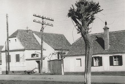 Links im Bild das 500 Jahre alte Steinhaus in der Obergasse Nr. 97 (früher 6) in Leschkirch. Rechts im Bild die jüngere Schankstube. Foto: privat