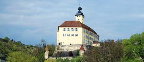 Helfen Sie mit, Schloss Horneck f�r uns zu retten!