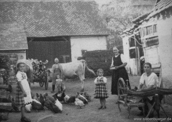 bilder von kleinprobstdorf familienleben in den 50er